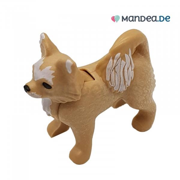 PLAYMOBIL® Hund Chihuahua Beige / Weiß 30674092